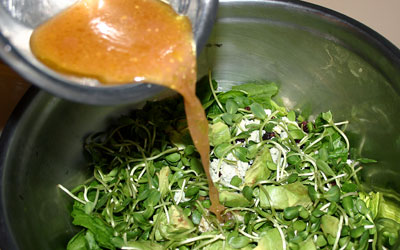 Walnut Cranberry Spinach Salad Step 6 - Mostly Meatless Almost Vegetarian Recipes
